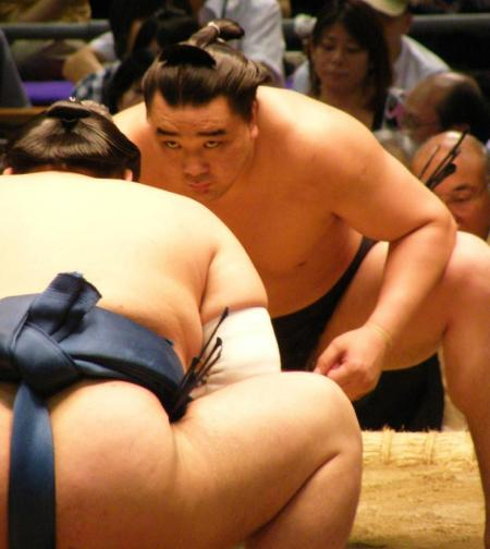 Harumafuji_01