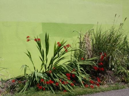 Greenspace2