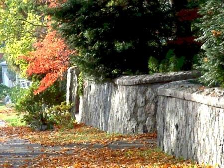 city walk in fall