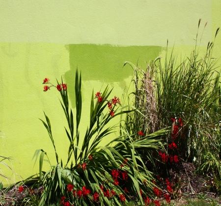 Greenspace2v2