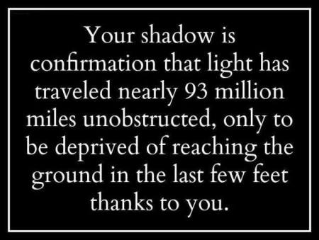 new shadow