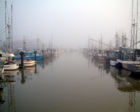 The Fleet in Fog_web