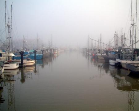 The Fleet in Fog_web